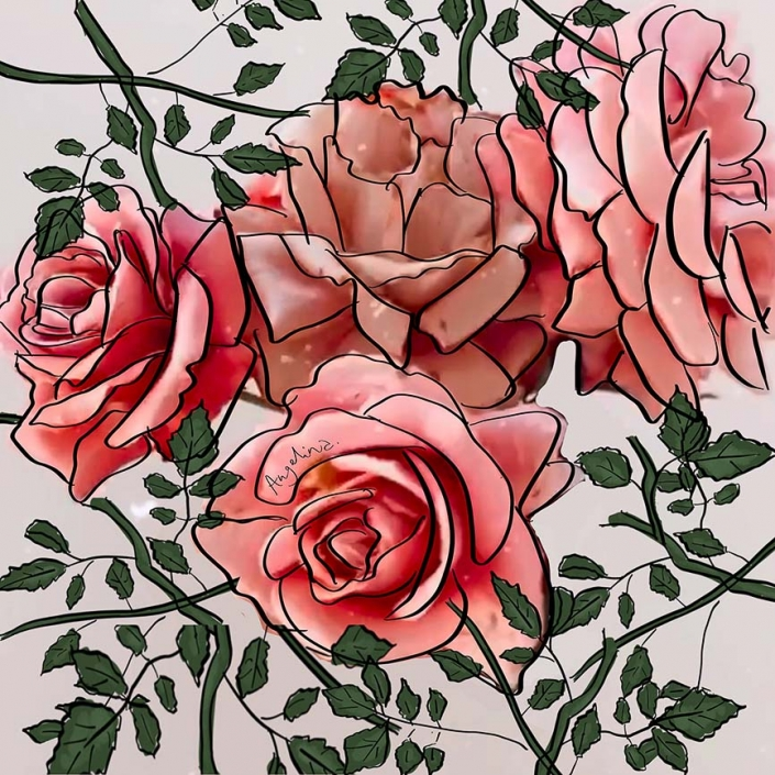 Rose-Art-Illustration
